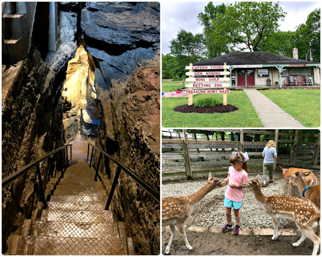 "From exploring a millions year old cavern 100 feet below the surface to petting fawns to panning for ""gems"", Olentangy Indian Caverns will be a definite favorite with your family during your visit to Delaware County, Ohio."