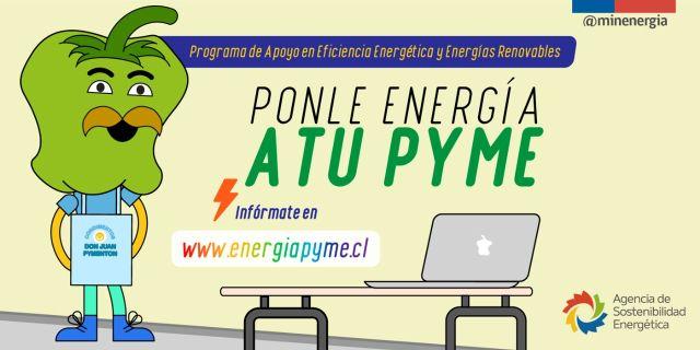 Alianza para apoyar el desarrollo energético de Mipymes en Los Lagos