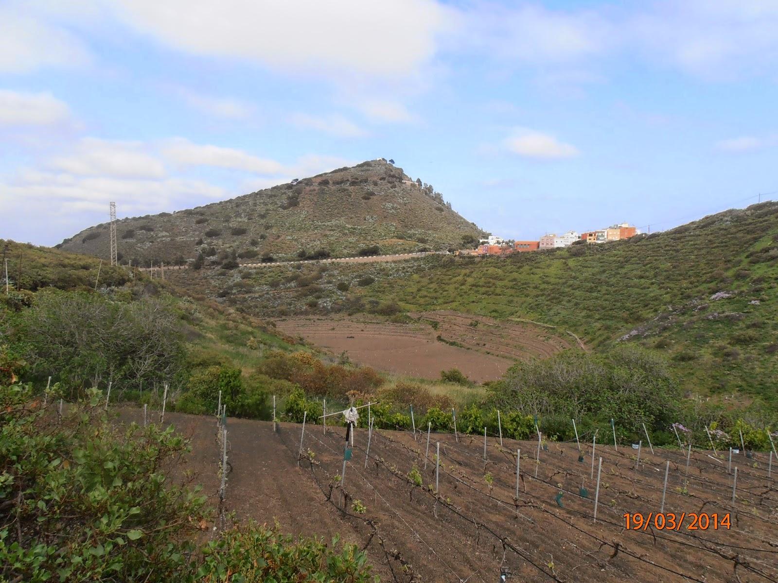 Pico de Bandama y Hoya del Alcalde