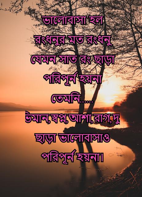 bengali shayari with picture