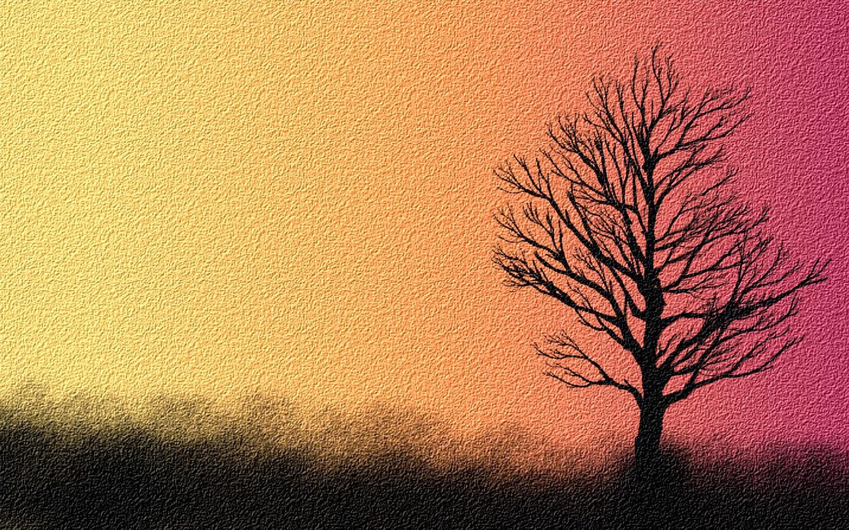 Sh Yn Design Phone Wallpaper Sad Lonely Tree