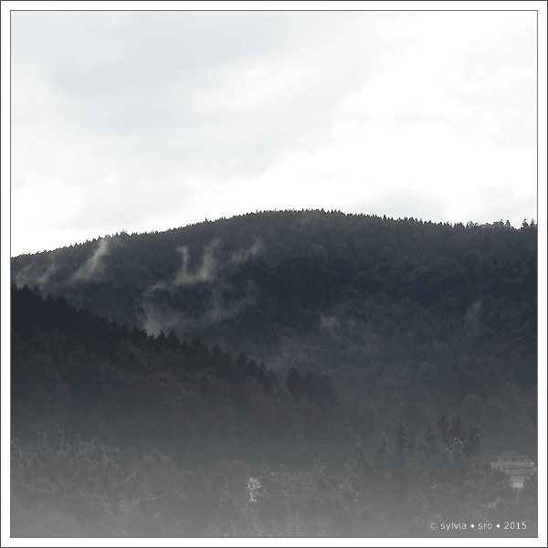 gewitter © sylvia • sro 2015