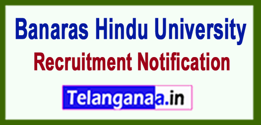 BHU Banaras Hindu University Recruitment Notification 2017