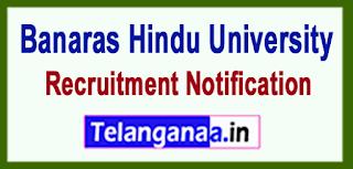 BHU Banaras Hindu University Recruitment Notification 2017 Last Date 10-07-2017