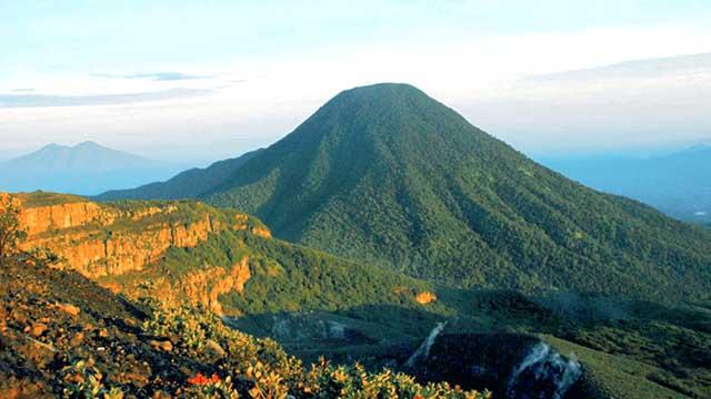 Taman_Nasional_Gunung_Gede_Pangrango
