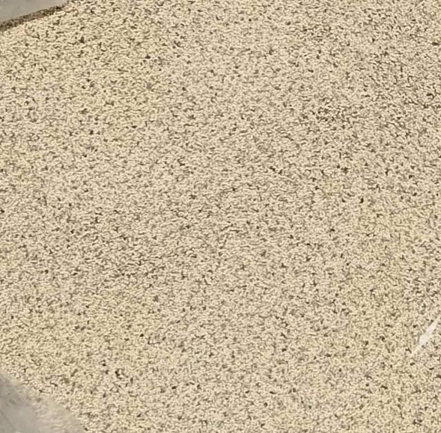 মোংলা বন্দরে আমদানী নিষিদ্ধ ৪ কন্টেইনার পোস্তদানা জব্দের ঘটনায় দুই প্রতিষ্ঠানের বিরুদ্ধে কাস্টমসের মামলা দায়ের