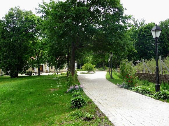 Батурин. Парк Кочубея. Алея