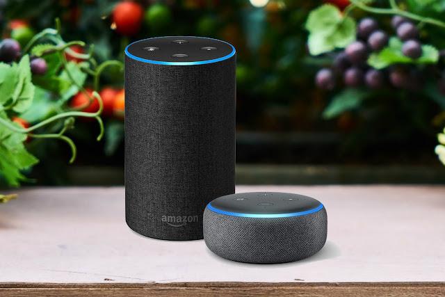5 ways Amazon Echo can help you stay healthy