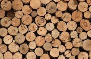 coste y precio de madera