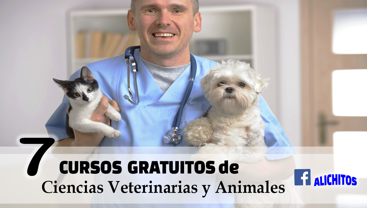 Libros Veterinaria Gratis Cursos Gratuitos De Medicina Veterinaria Alichitos