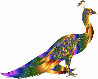 Essay On My Favourite Bird Peacock in Hindi