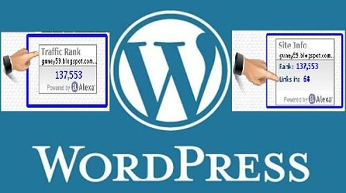 Wordpress Site için Alexa Banneri