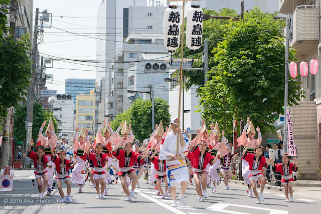 飛鳥連、マロニエ祭りの福井町通り流し踊り、スタート時の写真