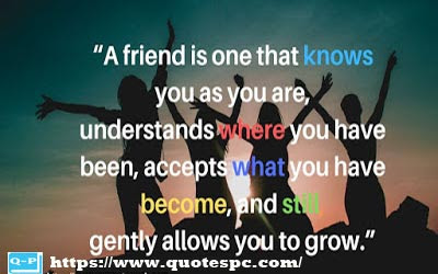 best friendship quotes - most famous quotes - quotespc