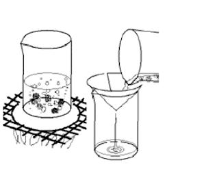 Tahapan Pembuatan Potato Dextrose Agar (PDA)