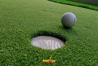Rumput Sintetis Golf