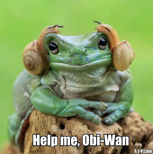 Funny Help me, Obi-Wan Frog Joke Picture