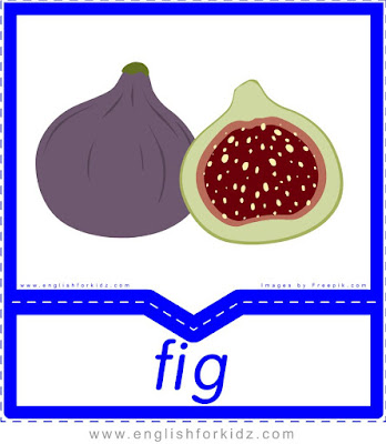 Fig - English flashcards for the fruits and vegetables topic