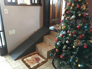 escadas internas para cães