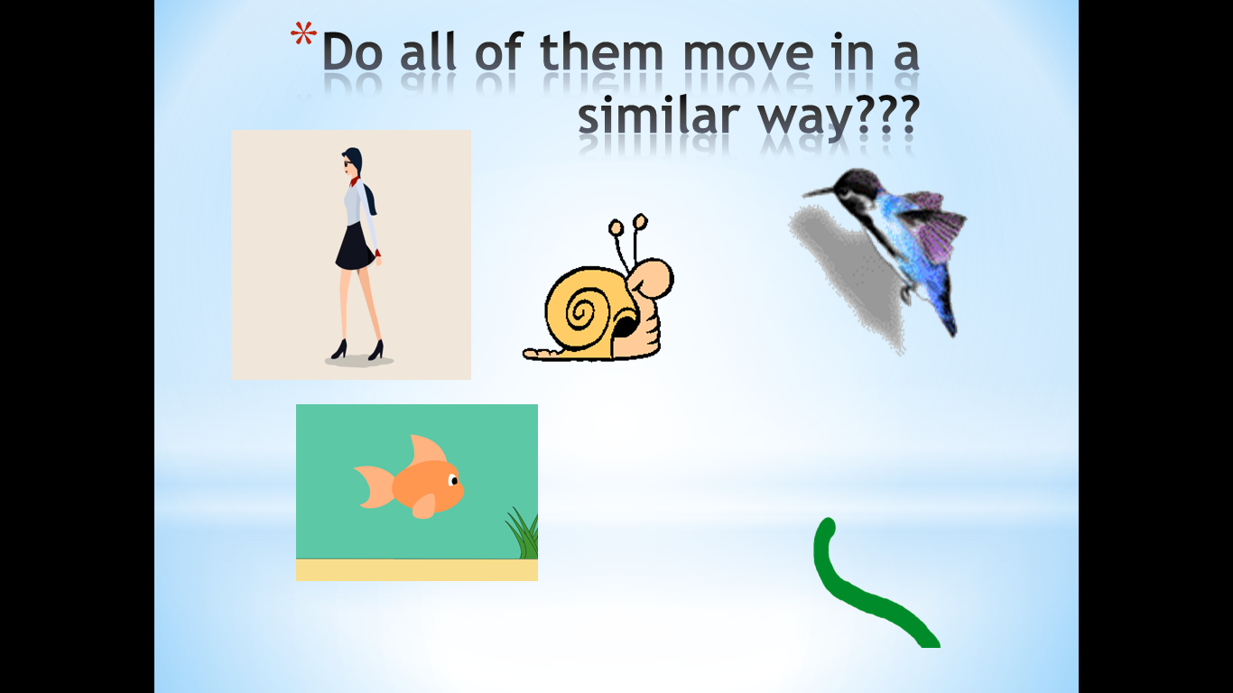 Learning Science Teaching Ict Lesson Gaits Of Animals