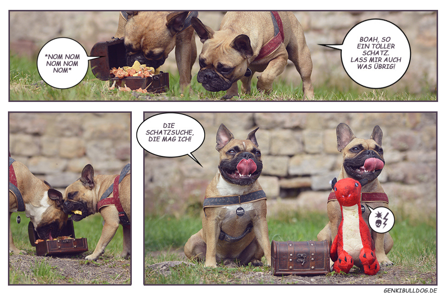 Französische Buldogge Comic Cartoon geschichte Schatzzsuche Hund Fotoaktion photostory frenchie bully