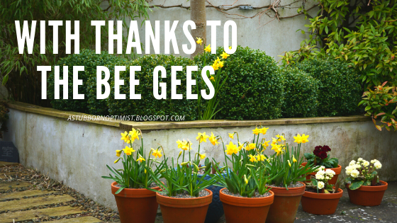 'with thanks to the Bee Gees' - a Stubborn Optimist blog - C.Gault