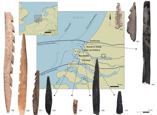 7,000-year-old arrows made from human bones discovered in Netherlands
