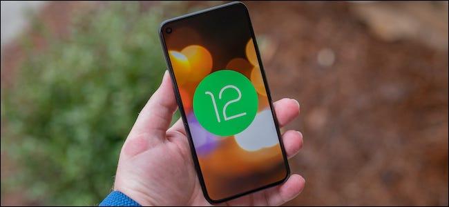 شعار Android 12 على Google Pixel 5