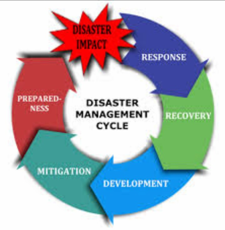 emergency management field essay Emergency essay is a professional essay writing service we know the real value of your time and try to maximize its utility everybody needs a good education as a basis for the future development.
