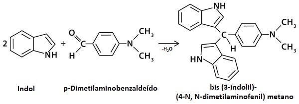 reação indol  p-dimetilaminobenzaldeído