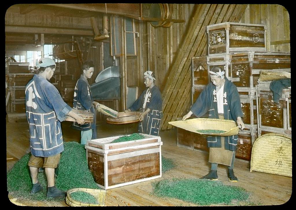 Chùm ảnh xưa về trà Nhật Bản 8