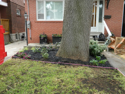 Baby Point Toronto front garden renovation after Paul Jung Gardening Services