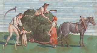 Détail d'un papier peint panoramique photographé par Christophe Daguet