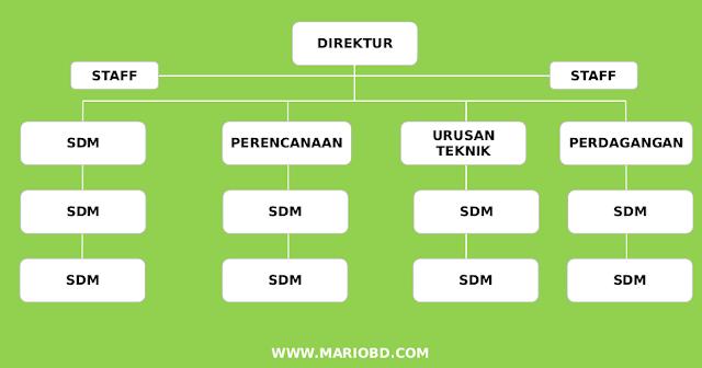 struktur organisasi garis dan staf
