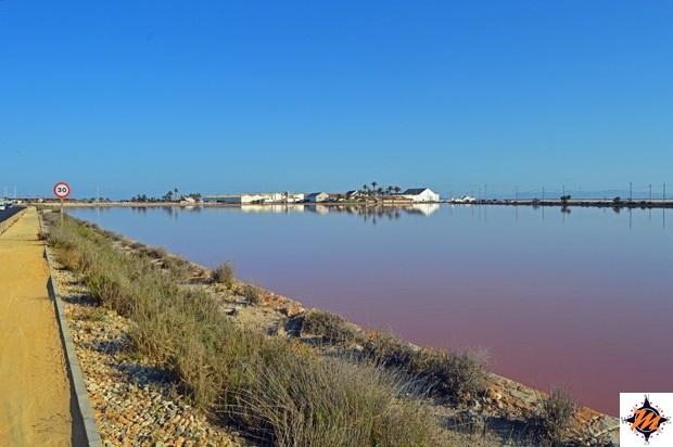San Pedro de Pinatar, Parque Regional Salinas y Arenales