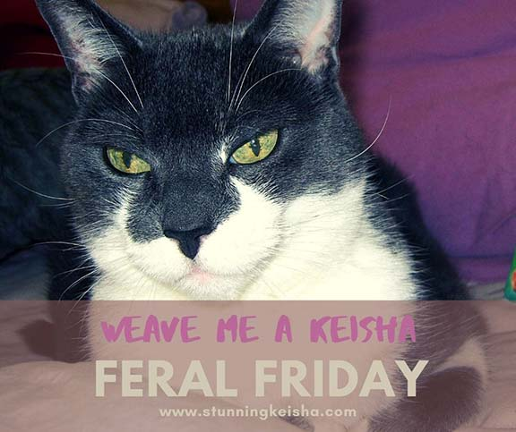 Feral Friday: Weave Me a Keisha