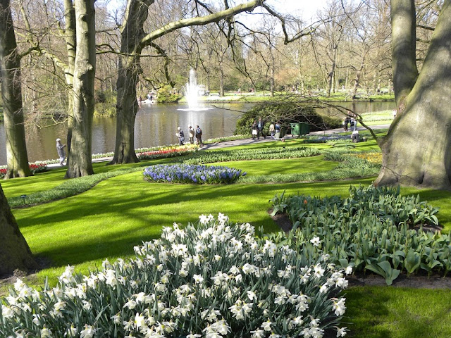 The Flowers of Keukenhof Lisse