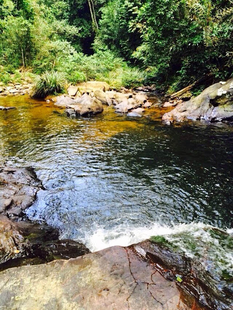 Aliran Sungai Lubuk Nginio