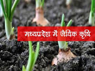 मध्यप्रदेश  में जैविक कृषि |M.P. Organic farming in Hindi