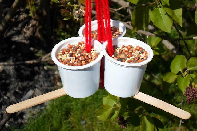 Happier than a pig in mud recycled k cup and popsicle for Bird seed glue recipe