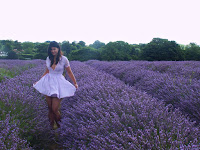 http://pridenstyle.blogspot.co.uk/2016/08/my-lavender-diaries.html