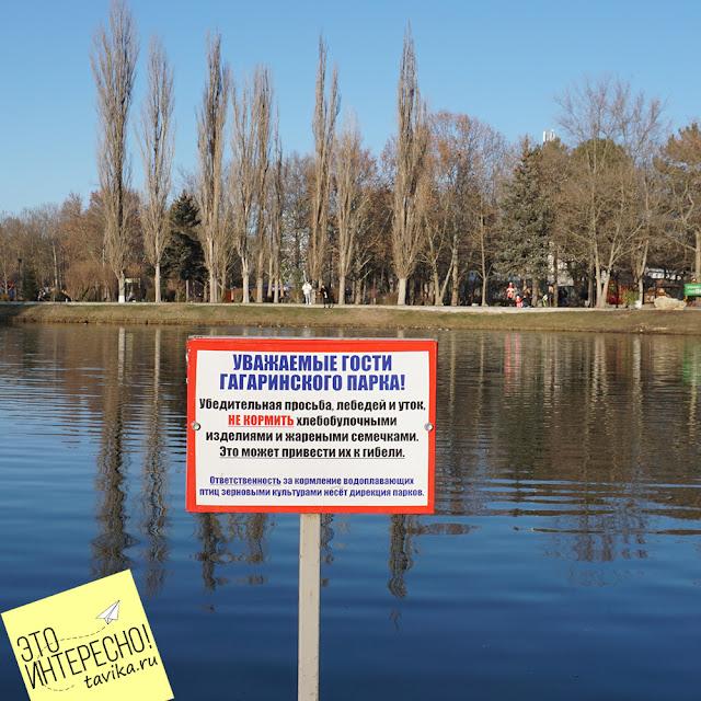 табличка в парке