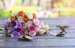 güller • gelin • düğün • gelin • Düğün • düğün buketleri • gelin buketleri aşk • saç • öpücük • buket • küpeler • sarılmak • aşk • gelin • düğün • öpücük • damat• buket • düğün • gelin • kucaklamak Kırmızı • Manken • Gülümseme • Gözler • Altın • Prenses • Renkler • Fotoğrafçılık • Hint • aksesuarlar • Ruh hali• Pencere • Kırmızı Elbise • Makyaj • Görünüş • Gelin • Fotoğrafçı • Sevinç • Geleneksel • Bal Yeşili • Deepa Thakur• Deepa • Makyaj • Özlem • Paralı yol • Shimla