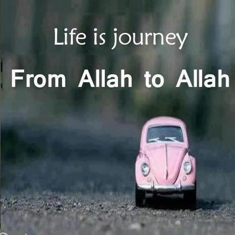 Allah Quotes - Life is journey From Allah to Allah
