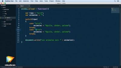 Curso Aprende a programar ¡en cualquier lenguaje!