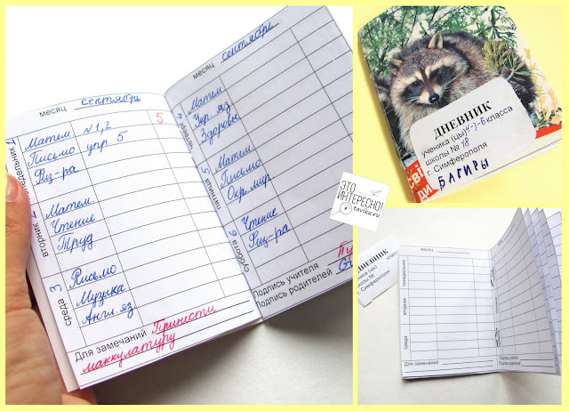 игрушечный дневник своими руками