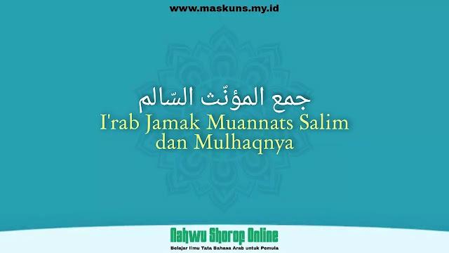 I'rab Jamak Muannats Salim