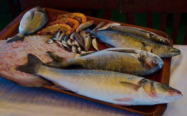 تناول السمك يوميًا جيدًا أو سيئًا