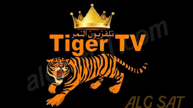 تطبيق tiger tv أحدث تطبيق لمشاهدة القنوات الرياضية المشفرة بالمجان