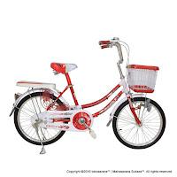 20 vivacycle cherry